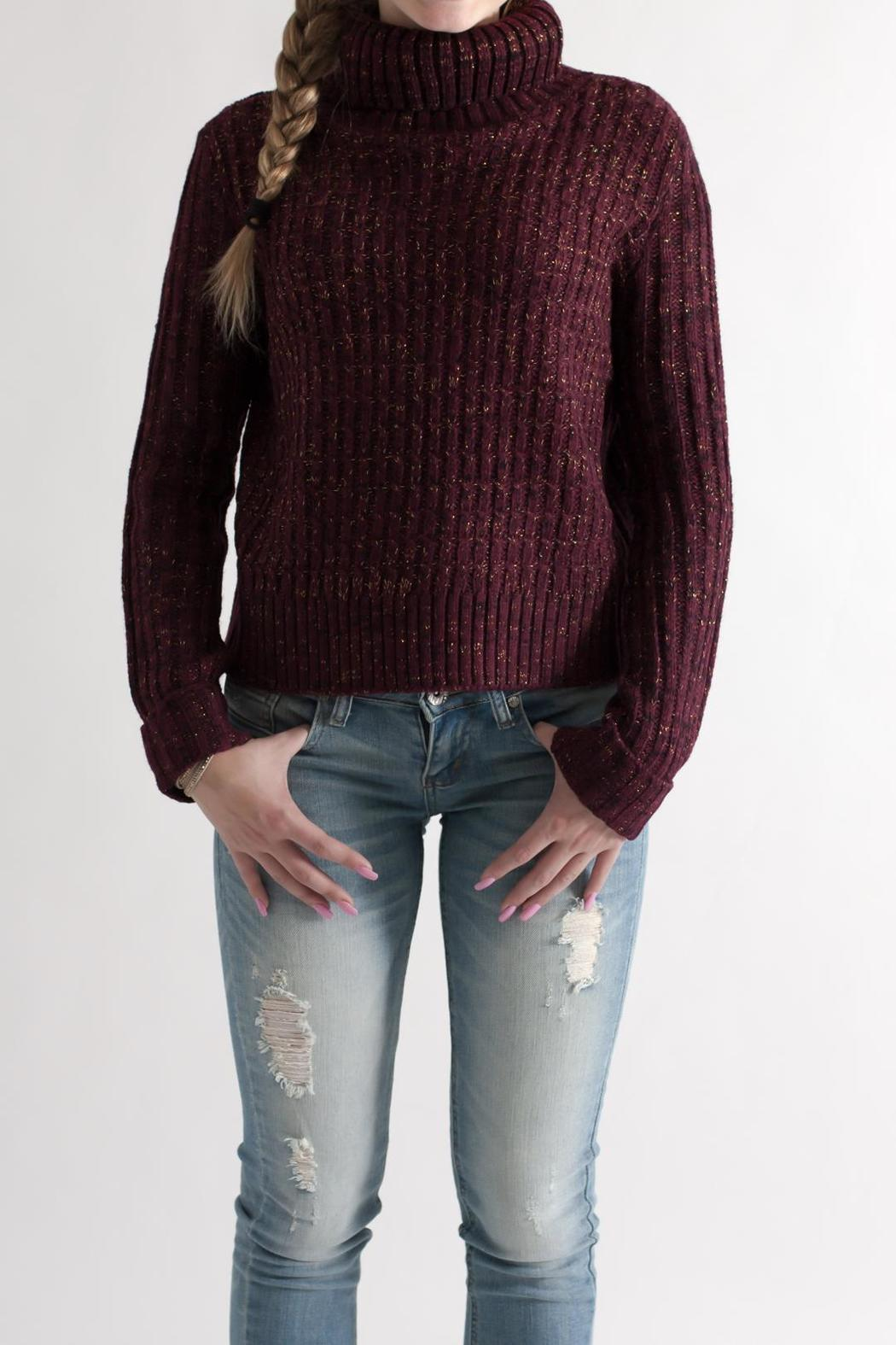 She + Sky Cropped Turtleneck Sweater - Main Image
