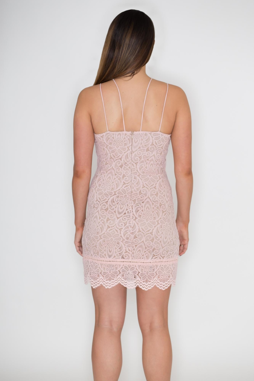 She + Sky Lace Cami Dress - Back Cropped Image