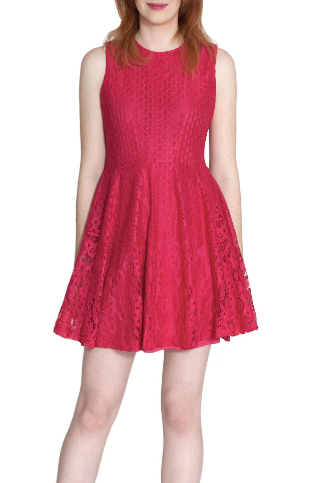 She + Sky Lace Flare Dress - Front Full Image