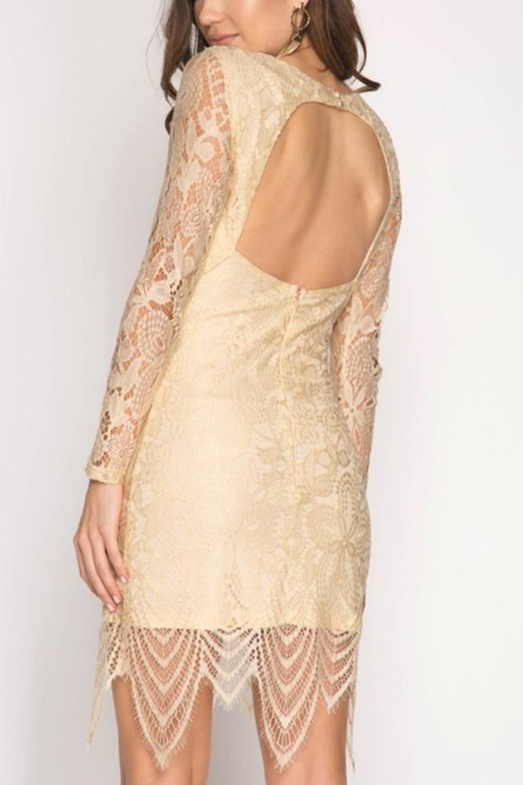 She + Sky Lace Open-Backed Dress - Front Full Image