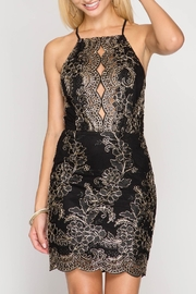 She + Sky Metallic Embroidered Dress - Product Mini Image