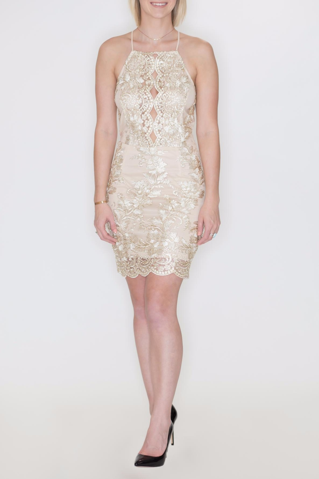 She + Sky Metallic Embroidery Dress - Main Image