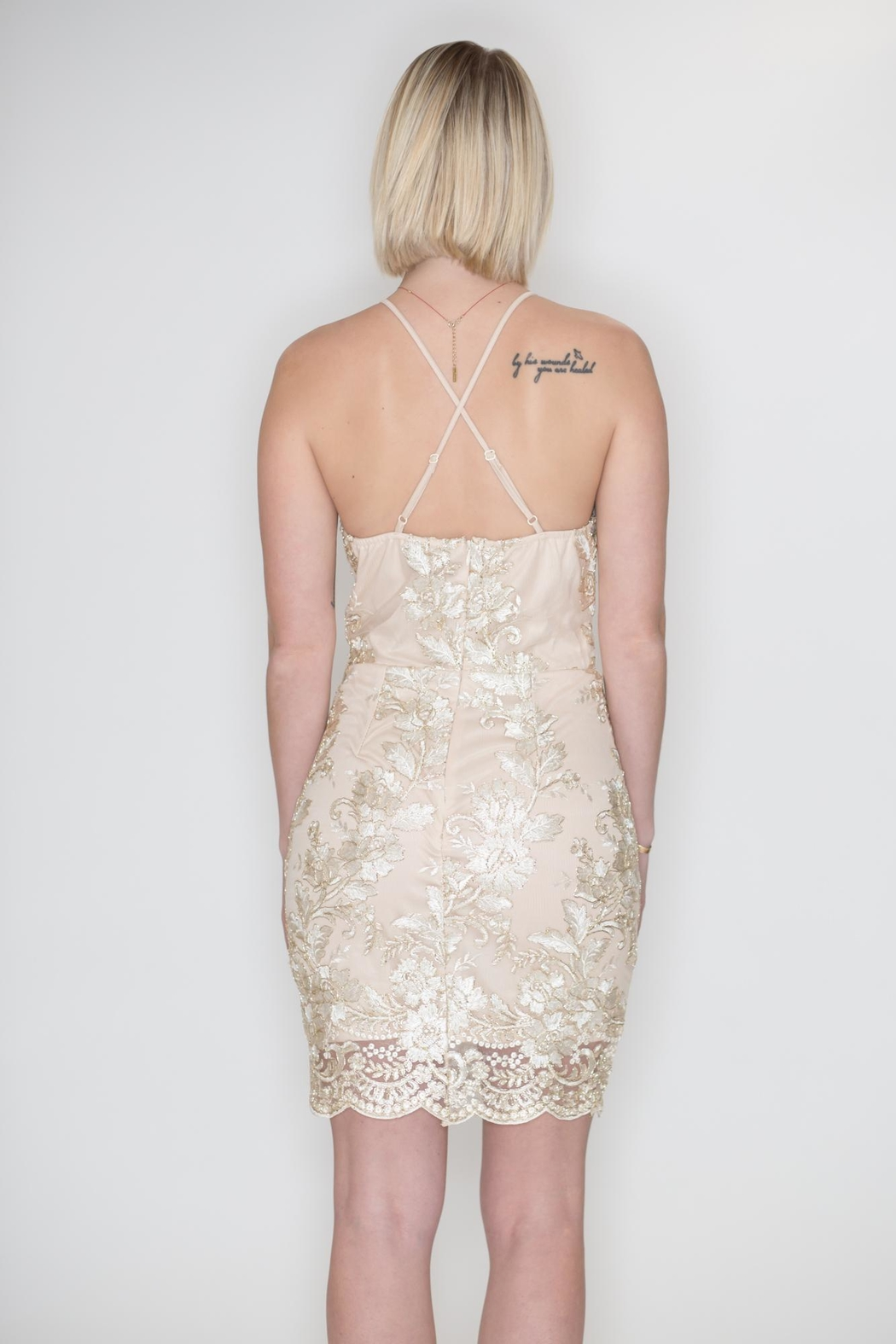 She + Sky Metallic Embroidery Dress - Back Cropped Image