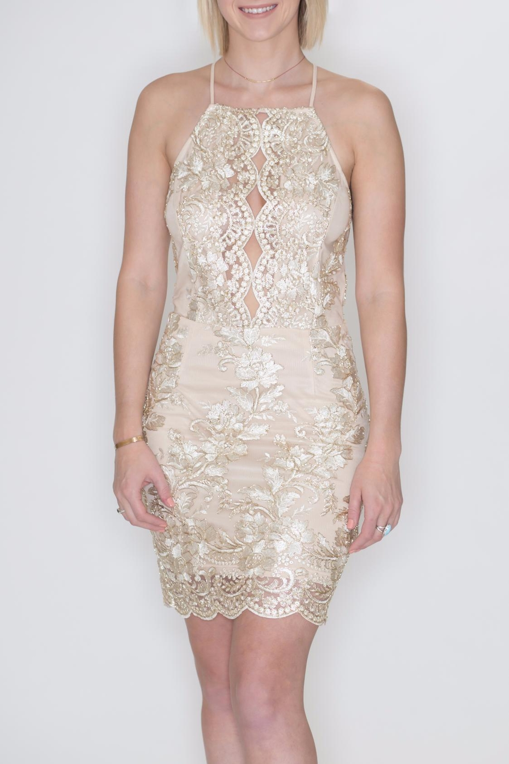 She + Sky Metallic Embroidery Dress - Front Full Image