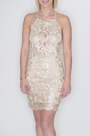 She + Sky Metallic Embroidery Dress - Front full body