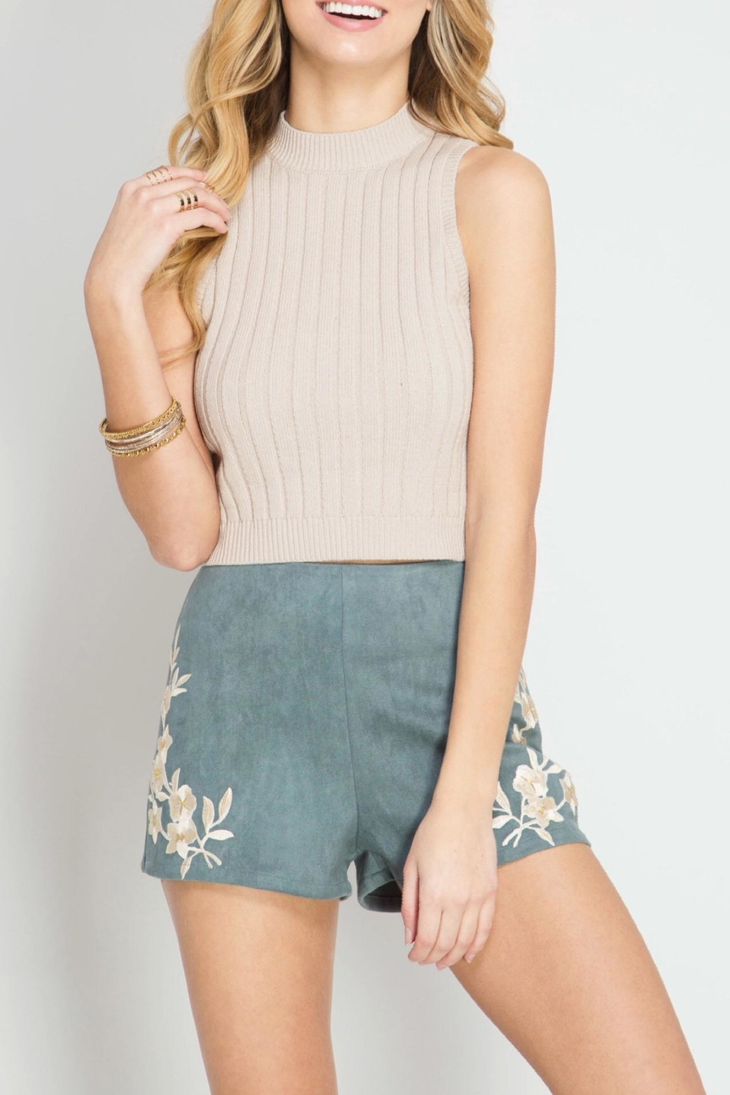 She + Sky Suede Emroidered Shorts - Front Cropped Image