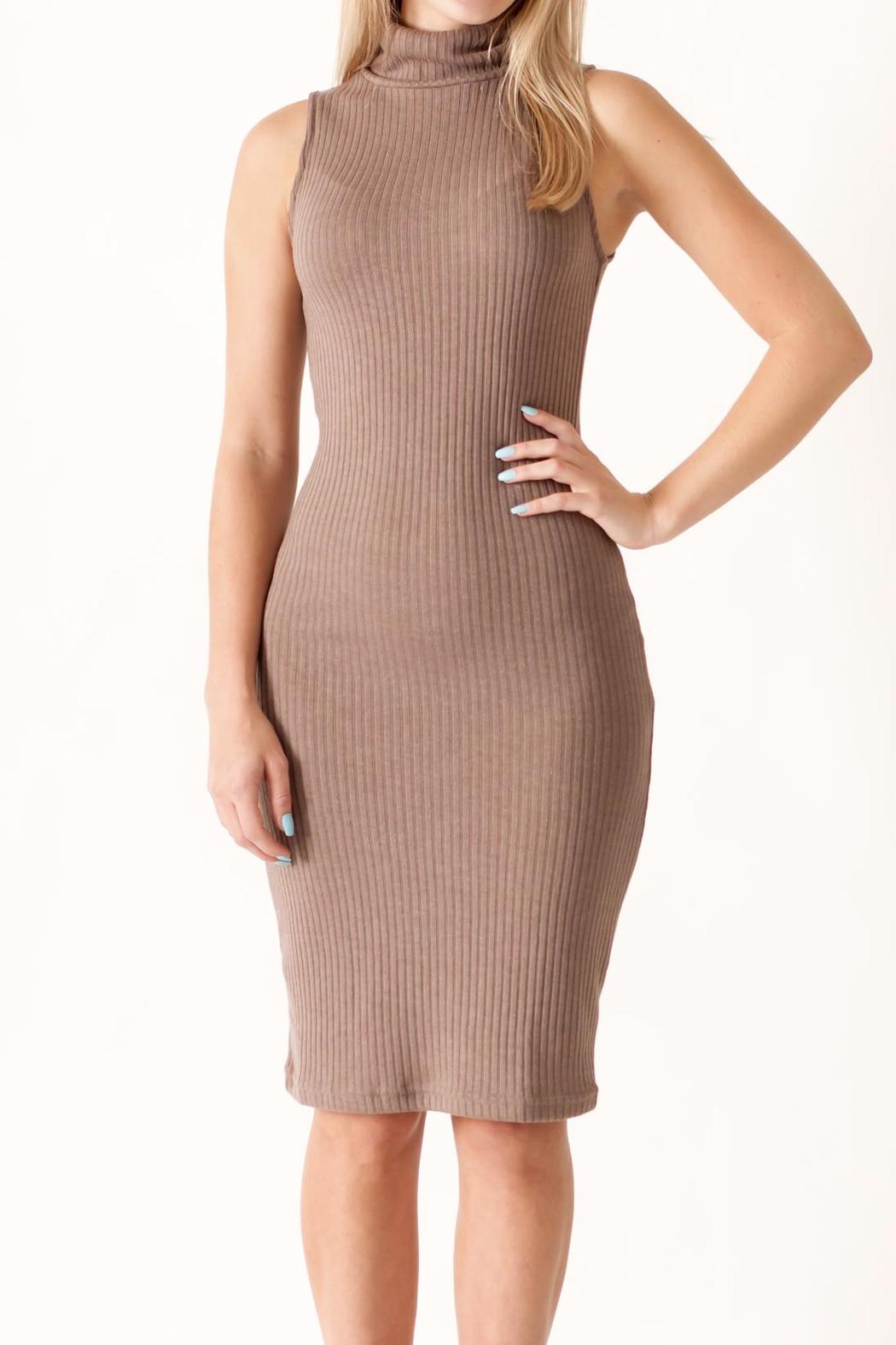 She + Sky Turtleneck Bodycon Dress - Front Cropped Image