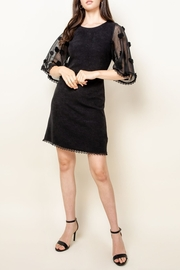 Thml Sheer Bell Sleeve Dress - Product Mini Image