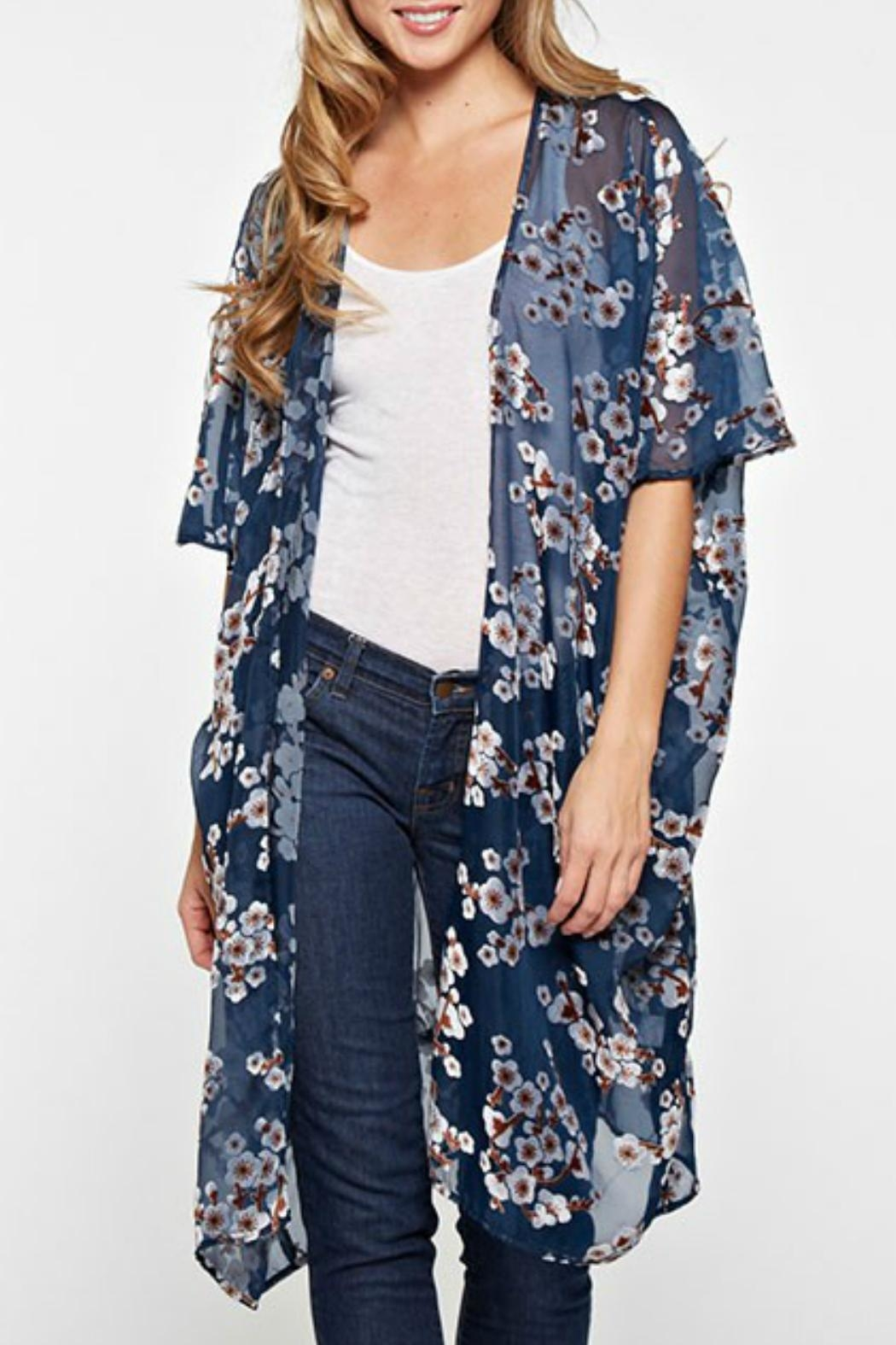 Love Stitch Sheer Burnout Kimono - Front Cropped Image