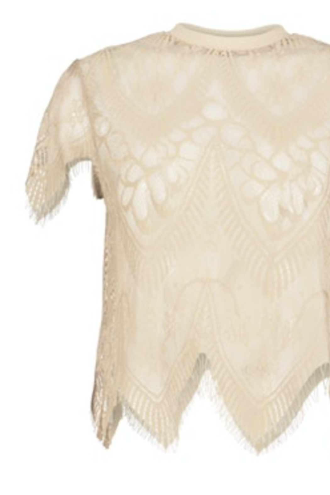 Bishop + Young SHEER GENIUS LACE TEE - Front Full Image