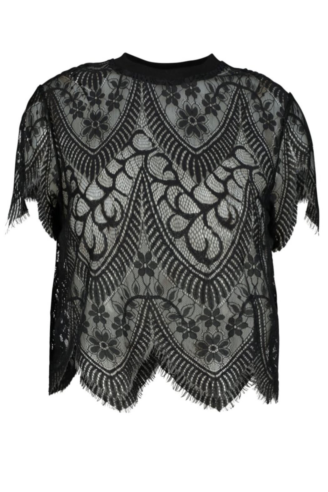 Bishop + Young Sheer Genius Lace Tee - Front Cropped Image