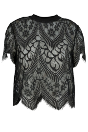 Bishop + Young Sheer Genius Lace Tee - Front cropped