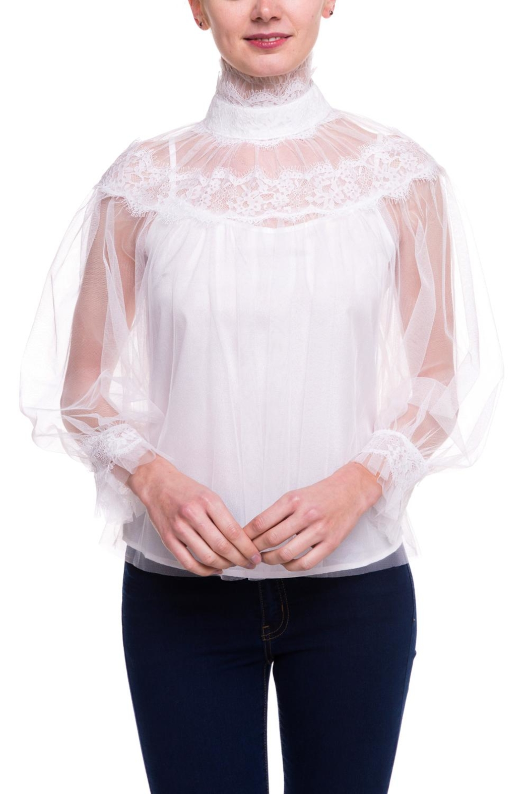 On Twelfth Sheer Lace Blouse - Main Image