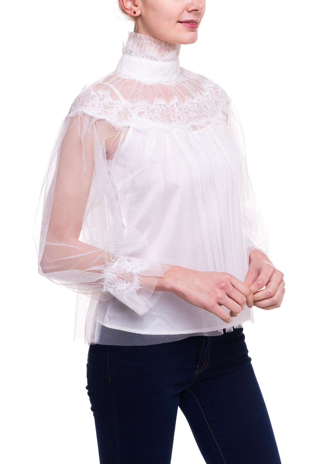 On Twelfth Sheer Lace Blouse - Front Full Image