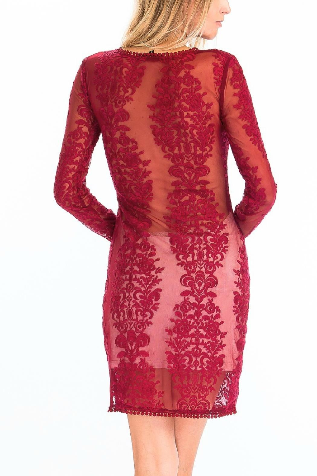 Olivaceous Sheer Lace Bodycon - Back Cropped Image