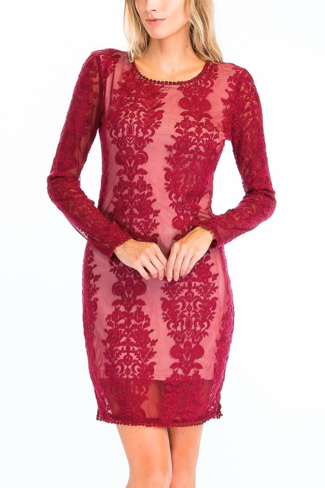 Olivaceous Sheer Lace Bodycon - Front Full Image