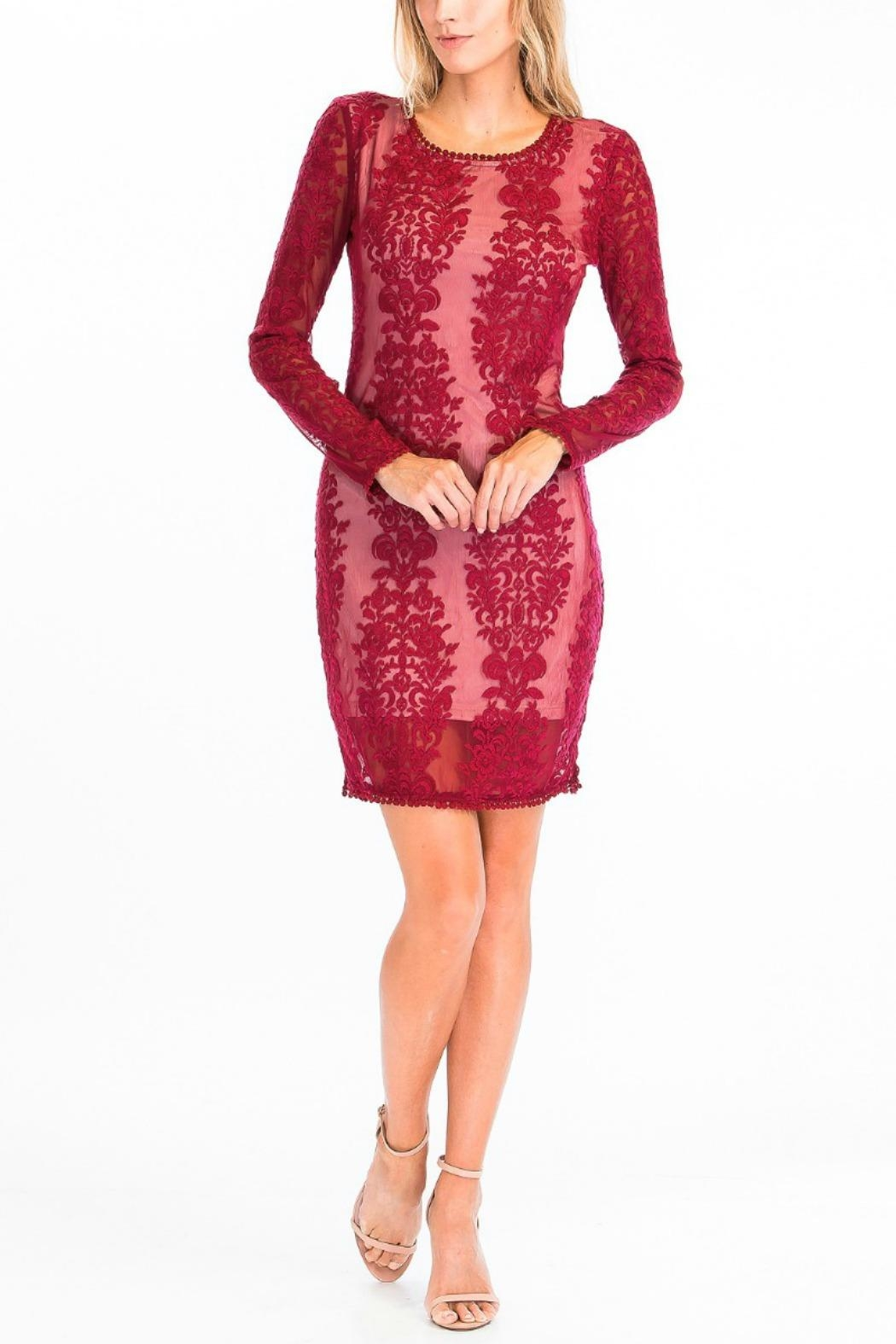 Olivaceous Sheer Lace Bodycon - Front Cropped Image