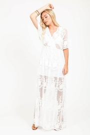 Bio Sheer Maxi Dress - Front full body