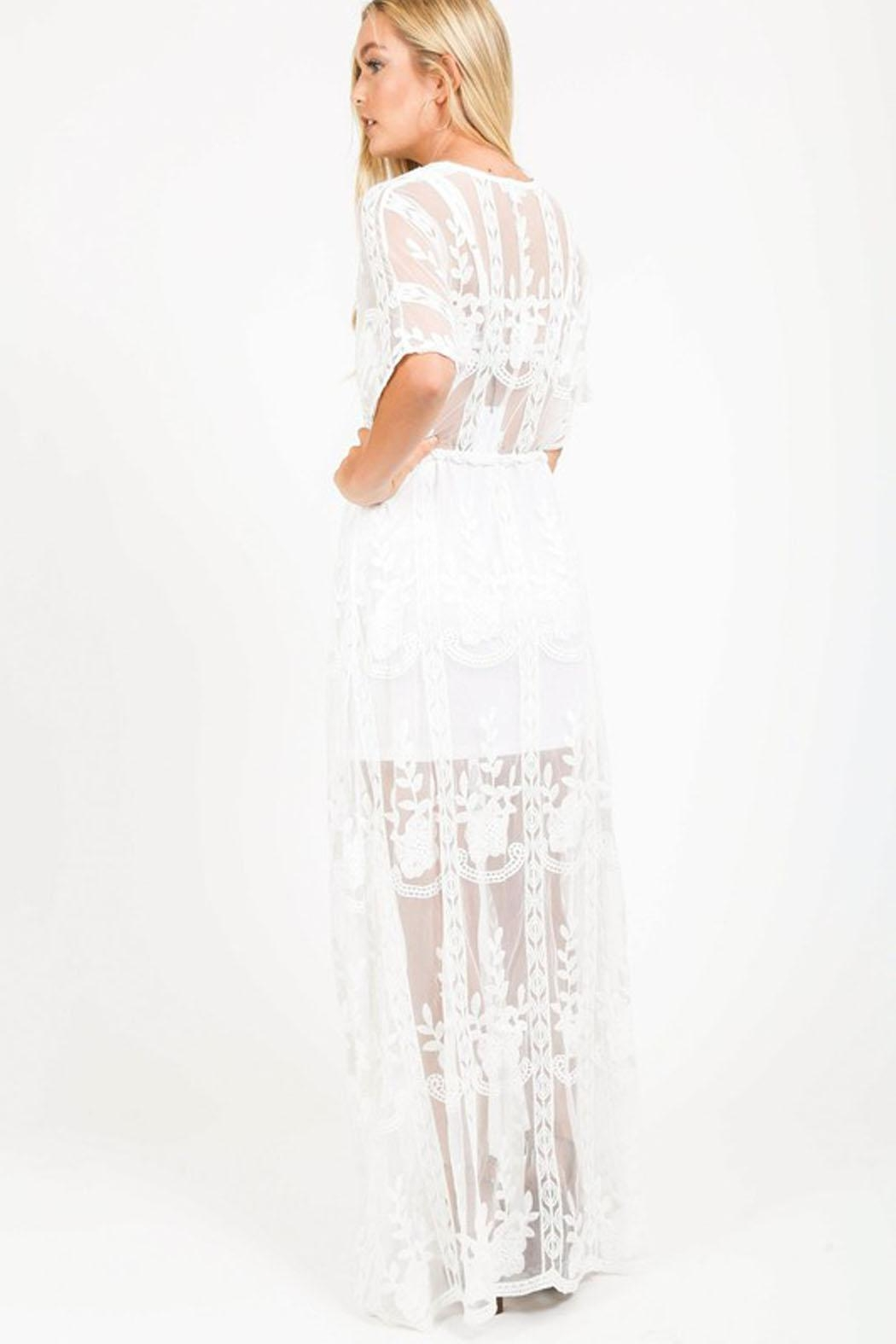 Bio Sheer Maxi Dress - Side Cropped Image