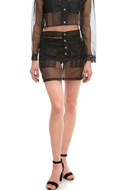 Hot & Delicious Sheer Mini Skirt - Product Mini Image