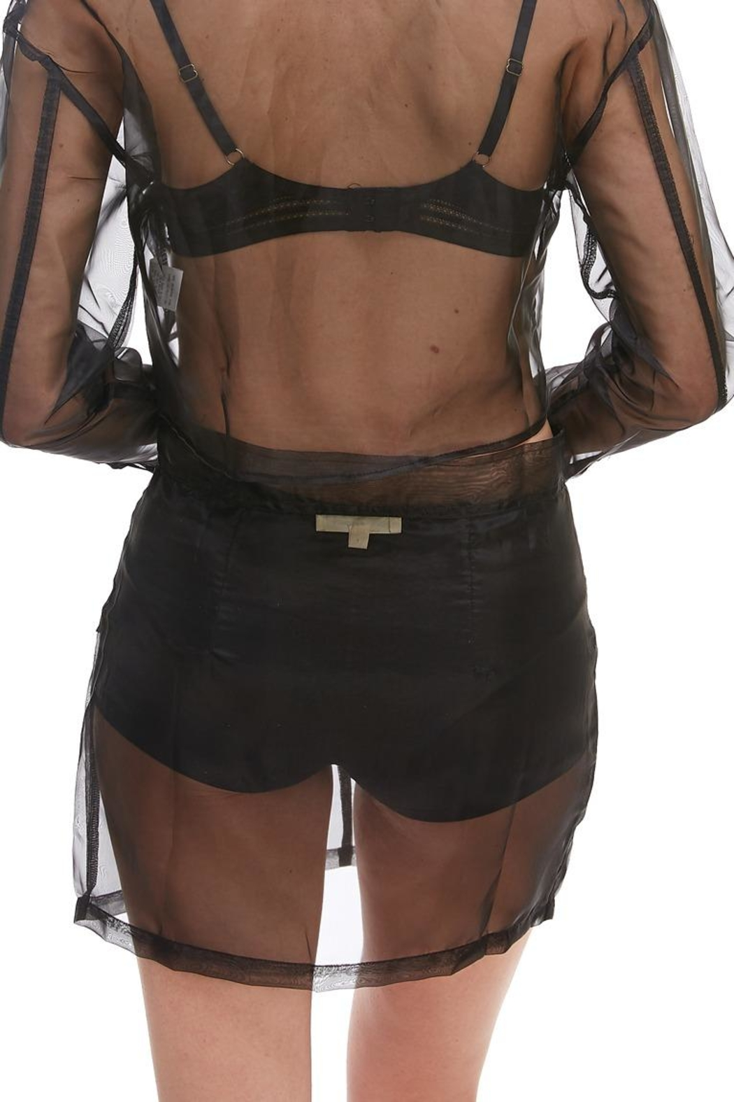 Hot & Delicious Sheer Mini Skirt - Side Cropped Image