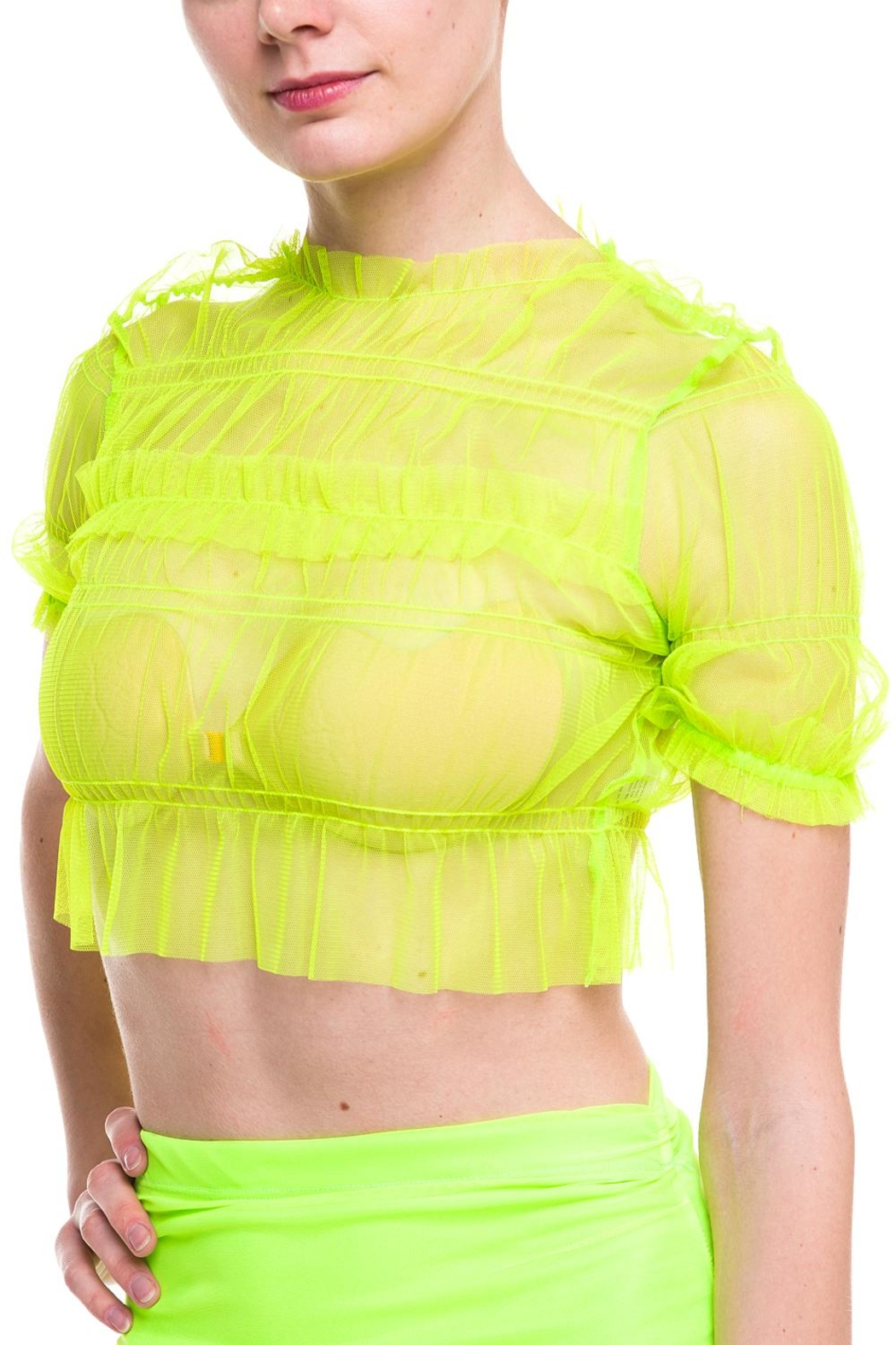 Rehab Sheer-Ruffle Crop Top - Front Full Image