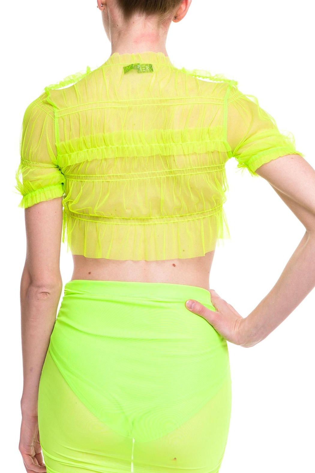 Rehab Sheer-Ruffle Crop Top - Side Cropped Image