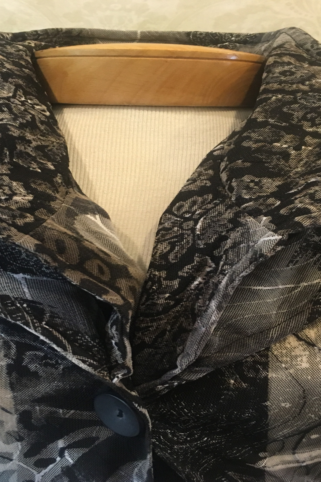 Damee sheer ruffle jacket - Front Full Image