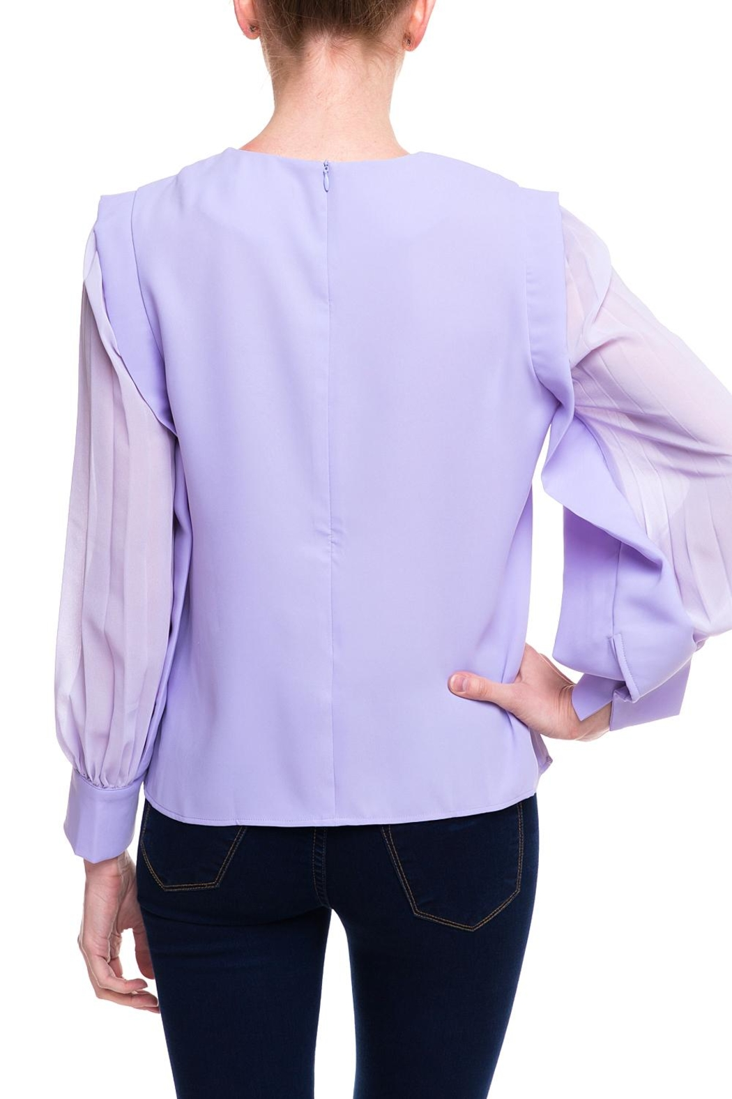 Ina Sheer Sleeve Blouse - Side Cropped Image
