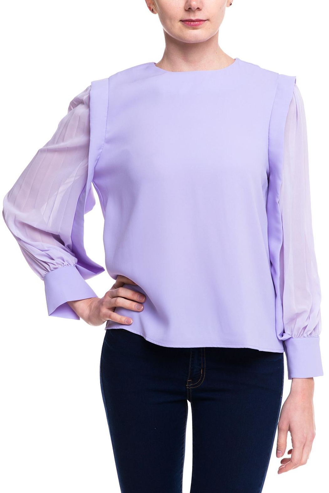 Ina Sheer Sleeve Blouse - Front Cropped Image