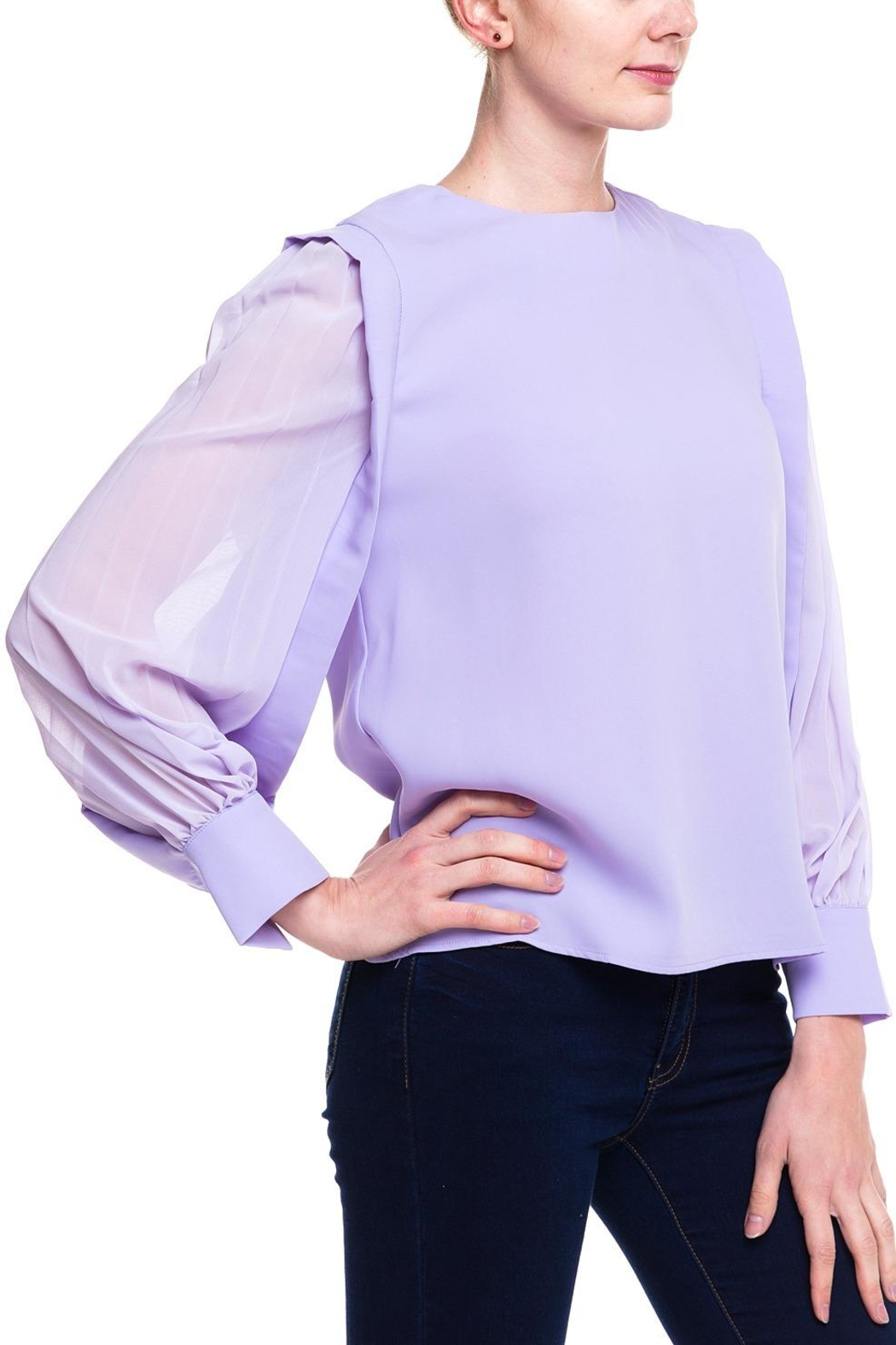 Ina Sheer Sleeve Blouse - Front Full Image