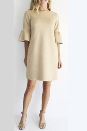 Jude Connally Shelby Faux Suede Dress - Product Mini Image