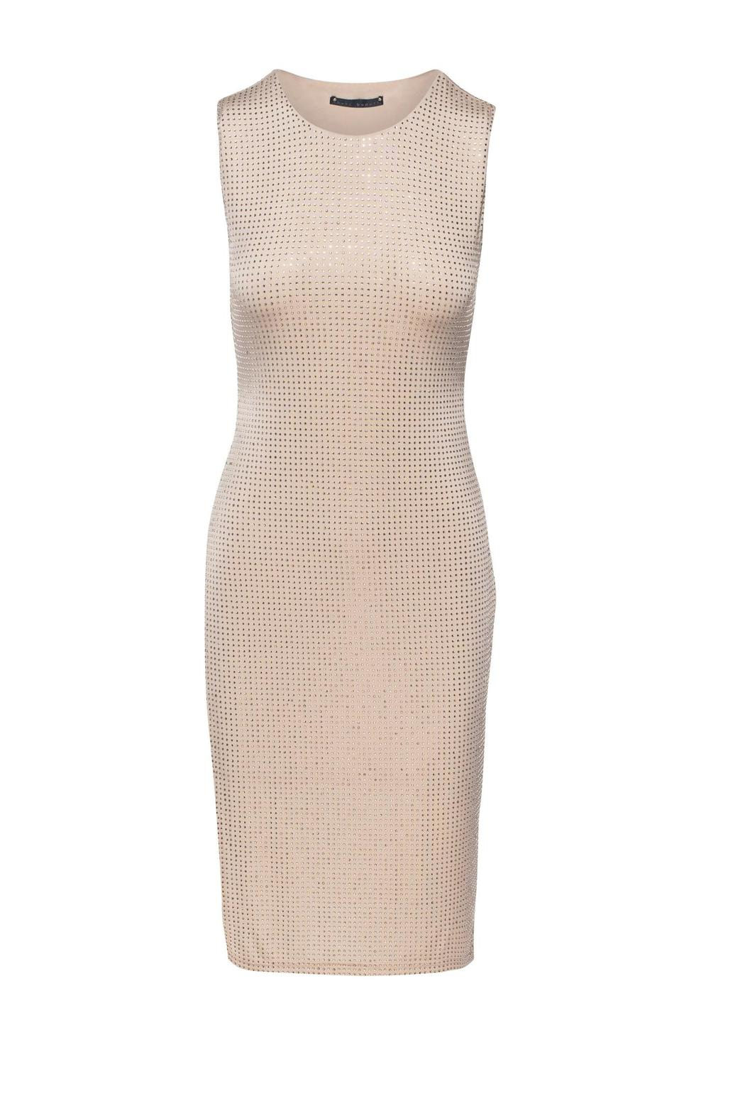 Sheri Bodell Crystal Overlay Dress - Front Cropped Image