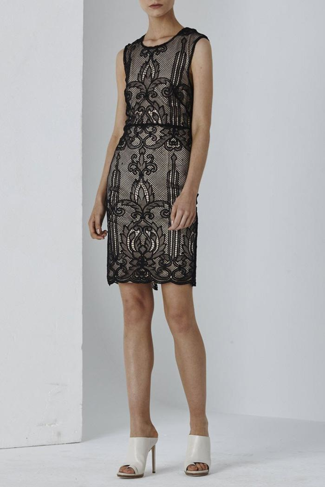 Shilla Dolce Lace Dress - Main Image