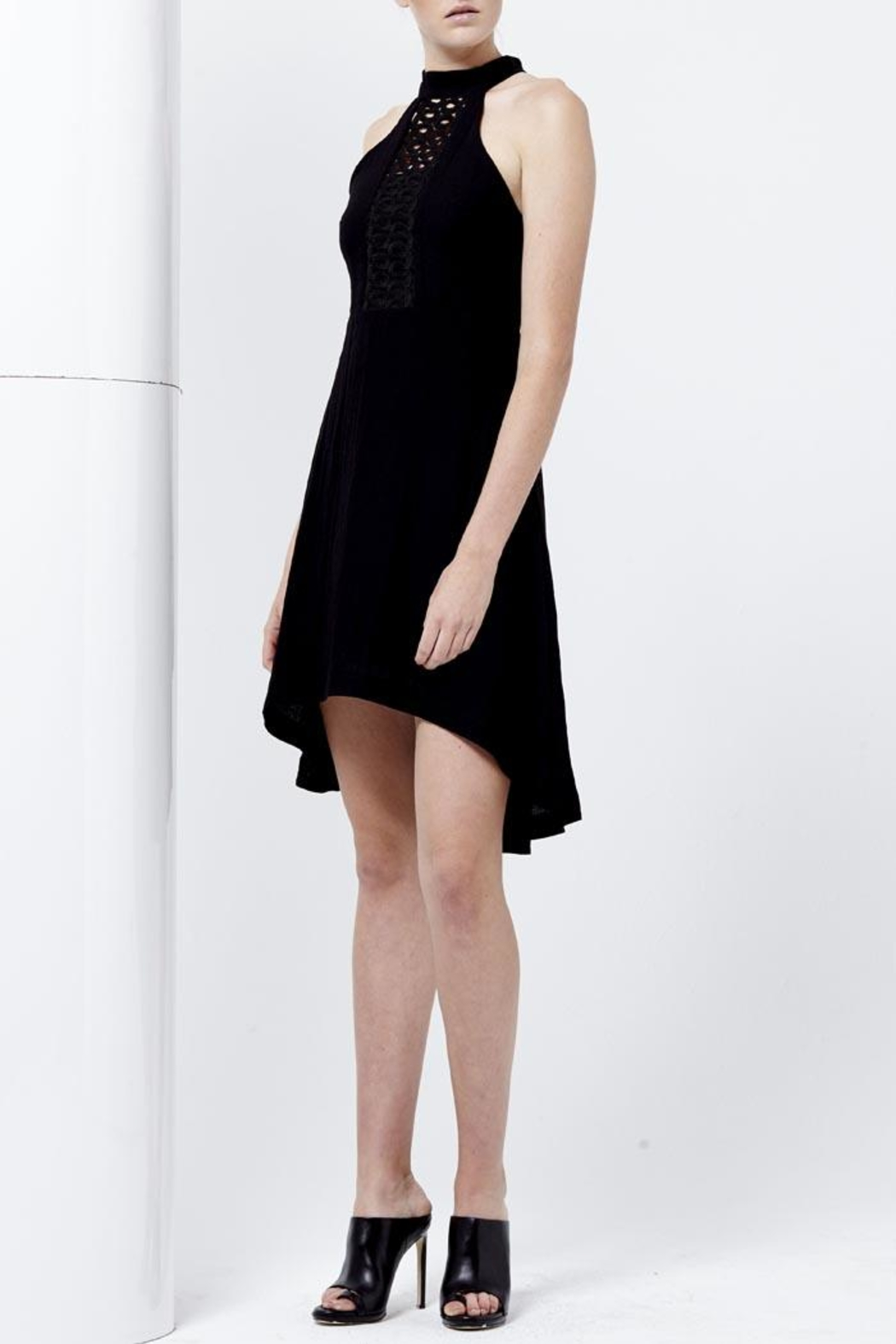 Shilla Rapture Hi-Lo Dress - Front Full Image