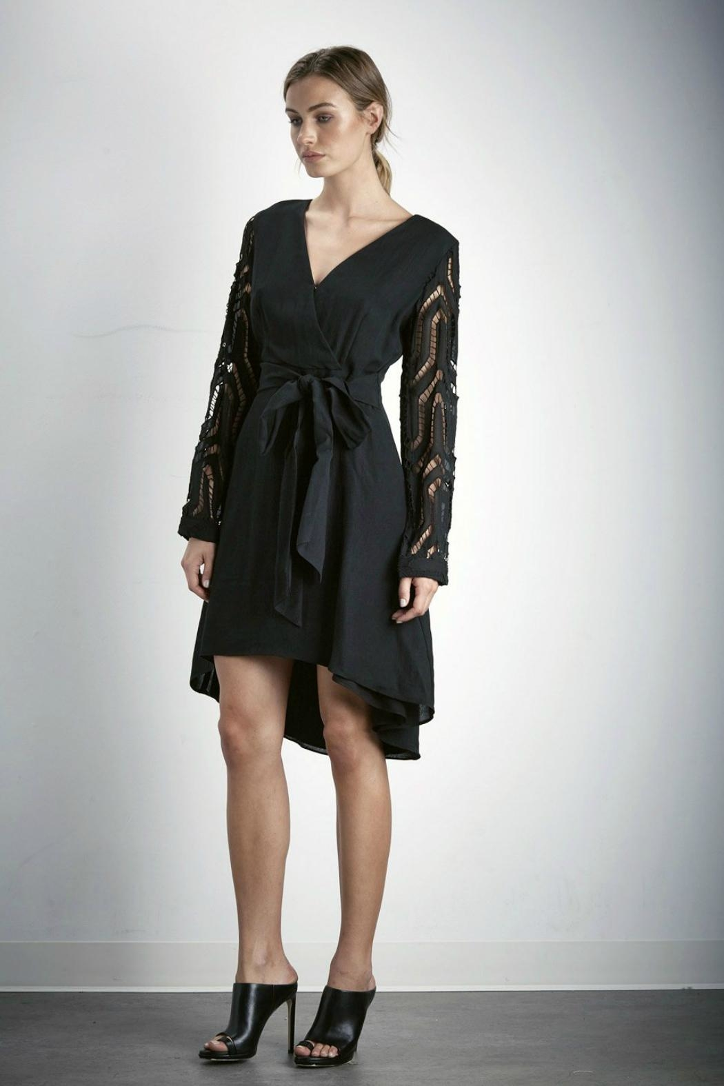 SHILLA THE LABEL Contrast Sleeve Dress - Side Cropped Image