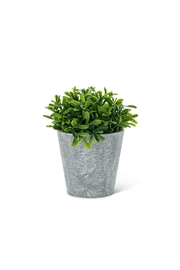 Abbott Collection Shiny Faux Plant - Product Mini Image
