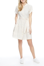 Gal Meets Glam Shirred Drindle Dress - Product Mini Image