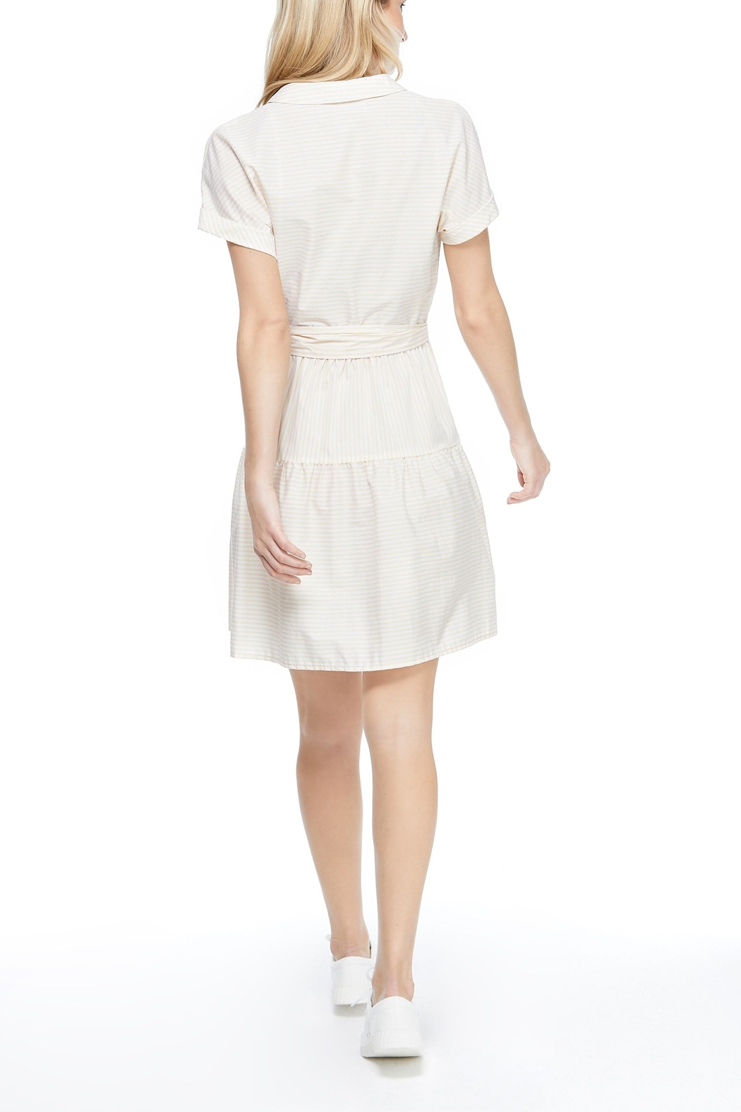 Gal Meets Glam Shirred Drindle Dress - Front Full Image