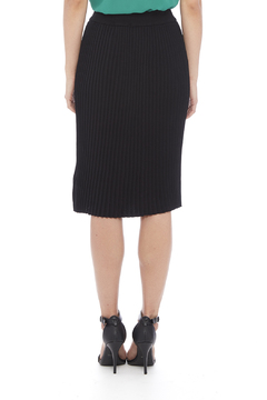 Shop The Trends  Black Pleated Skirt - Alternate List Image