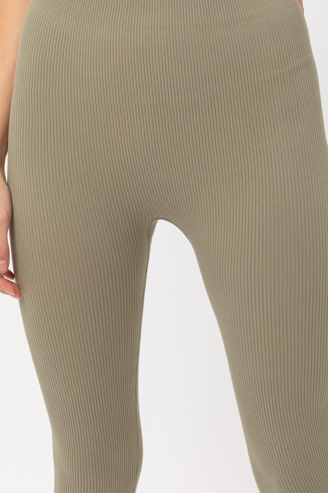 ShopGoldies Ribbed Legging - Side Cropped Image