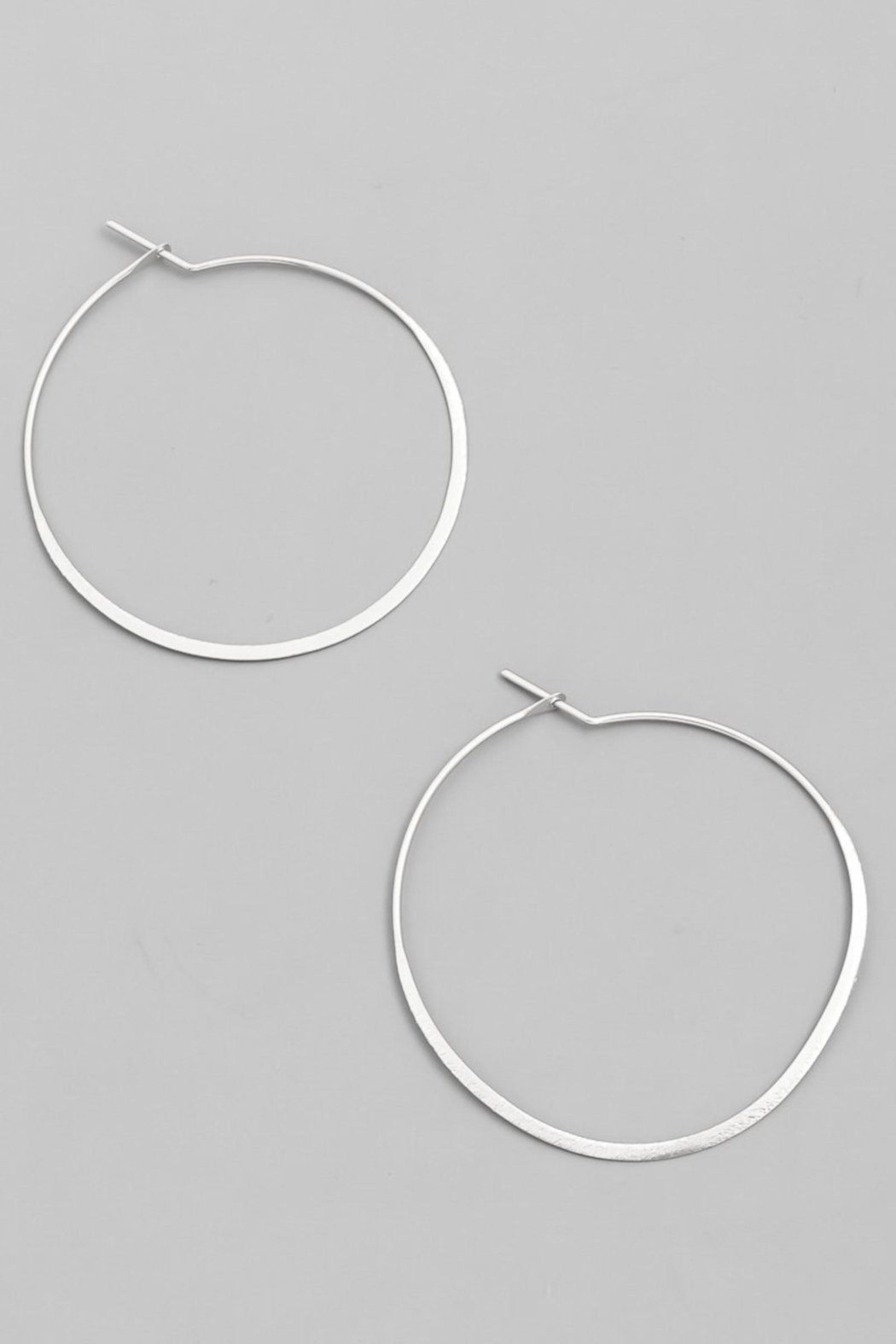 ShopGoldies Simply Perfect Hoop - Main Image
