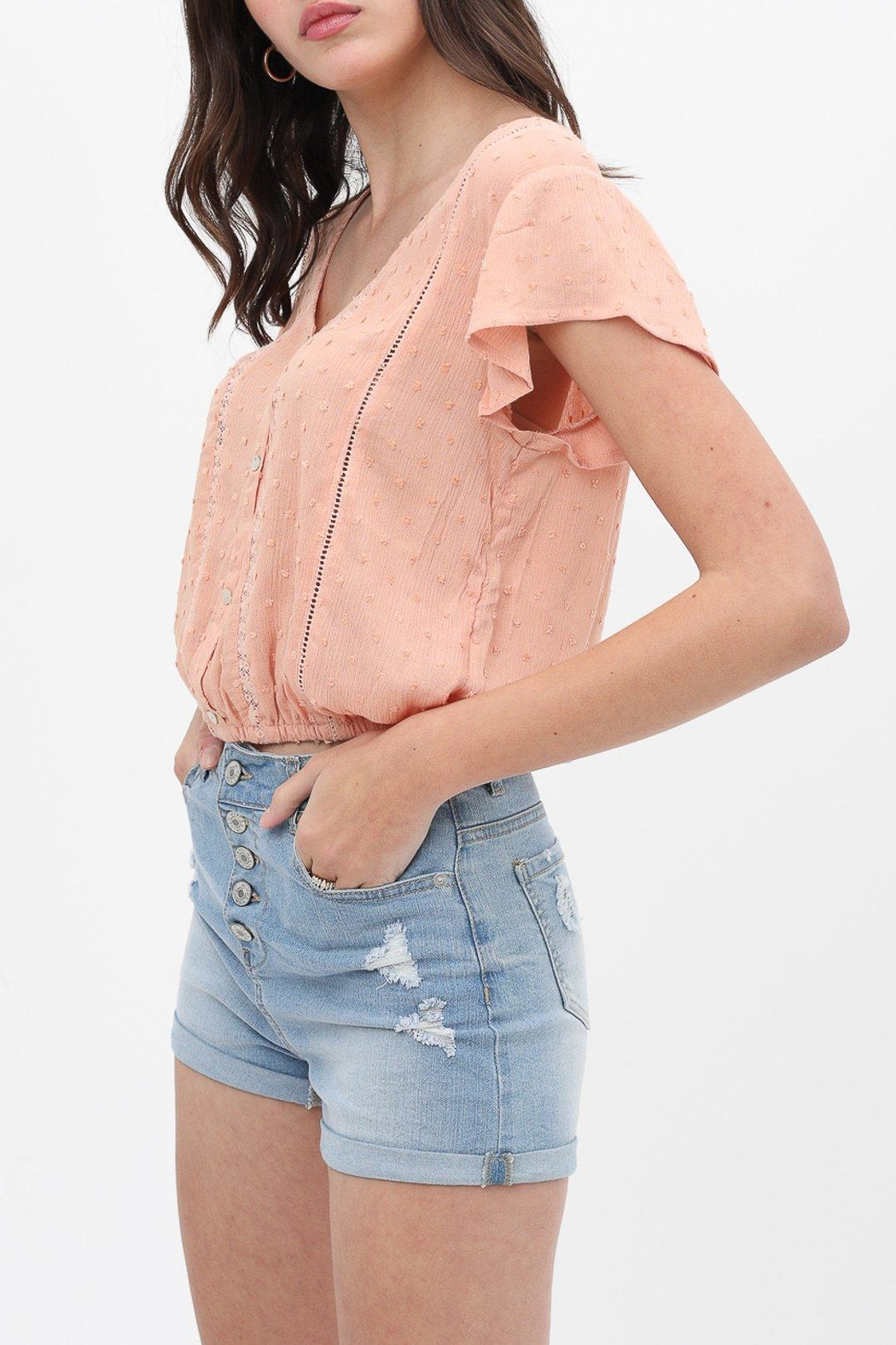 ShopGoldies Whimsy Lace Blouse - Side Cropped Image