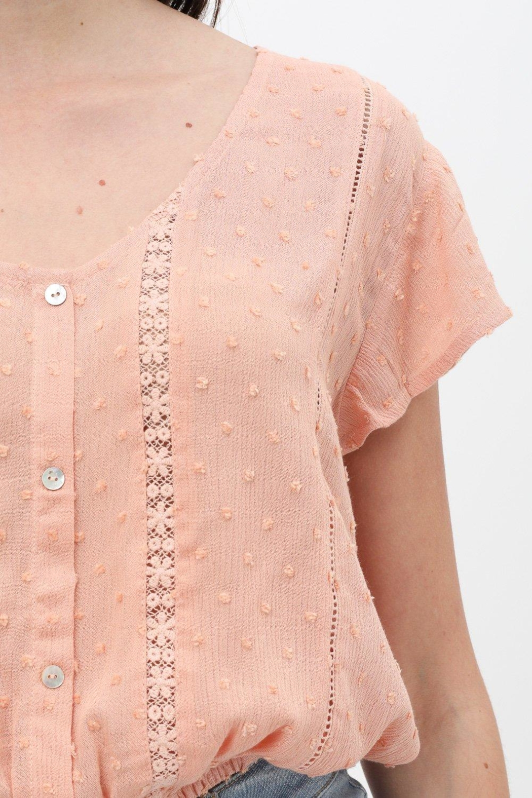 ShopGoldies Whimsy Lace Blouse - Back Cropped Image