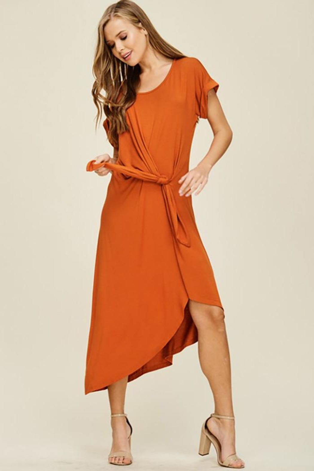 annabelle Short Sleeve Dress - Front Cropped Image