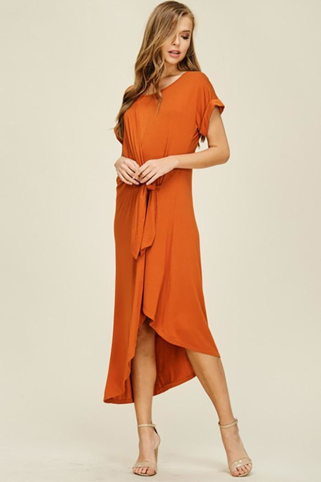 annabelle Short Sleeve Dress - Side Cropped Image