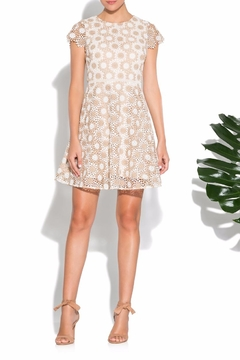 Shoshanna Fit & Flare Lace Dress - Alternate List Image