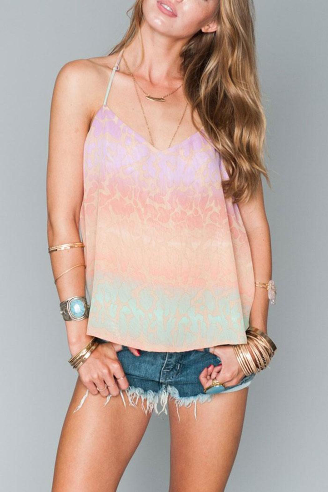 Show Me Your Mumu Andi Halter Top - Front Cropped Image