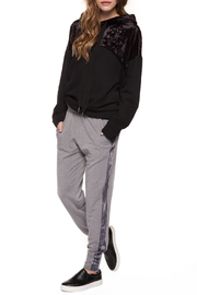 Dex Side Velour Jogger - Product Mini Image