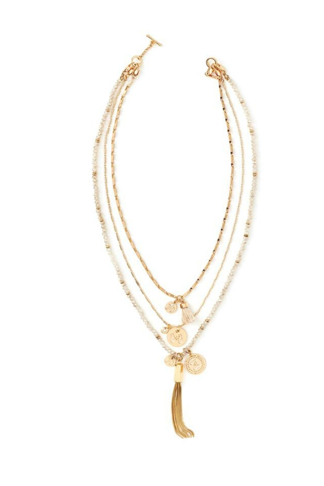 Coco + Carmen Signature Necklaces - Front Cropped Image
